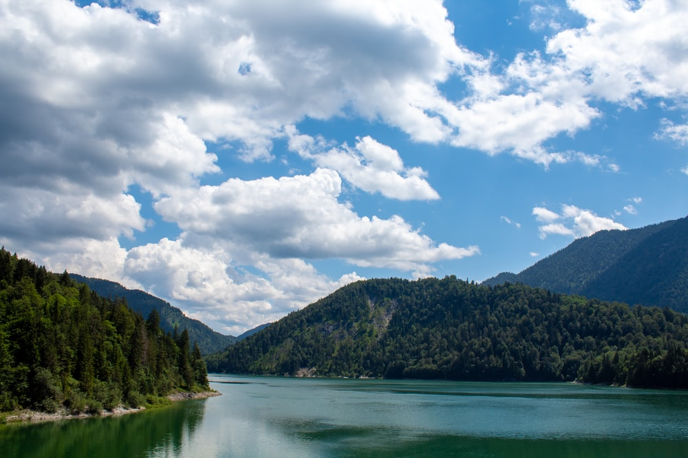 green trees near lake under white clouds and blue sky during daytime