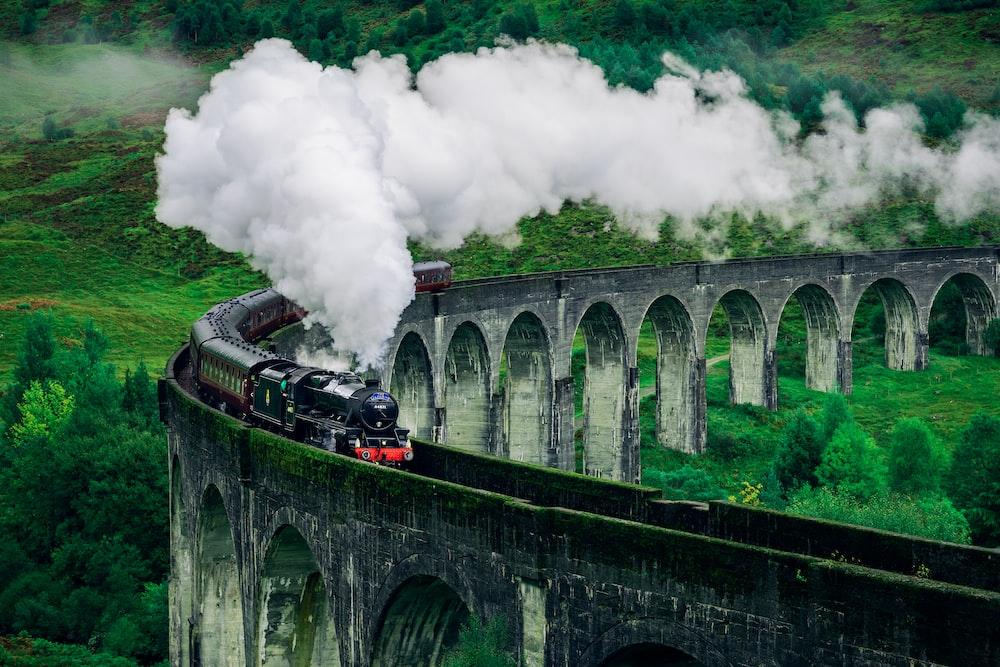 black and white train on rail bridge
