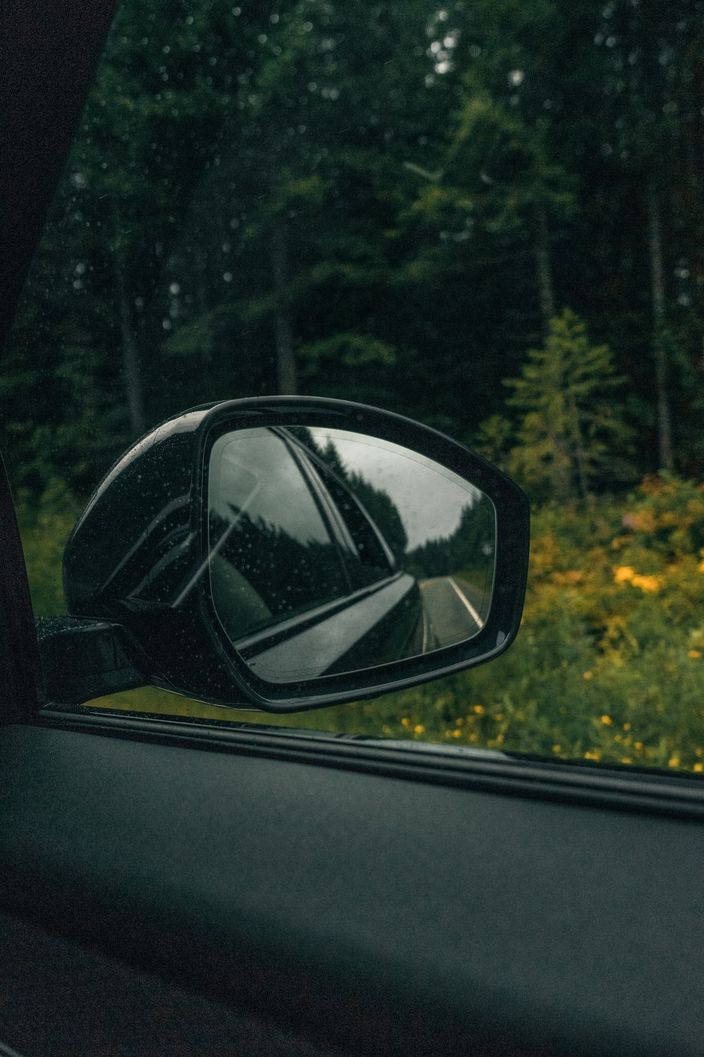 car side mirror reflecting green trees during daytime