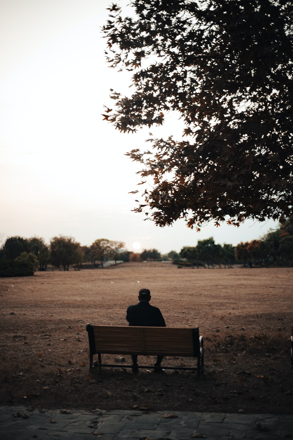 person sitting on brown wooden bench during daytime