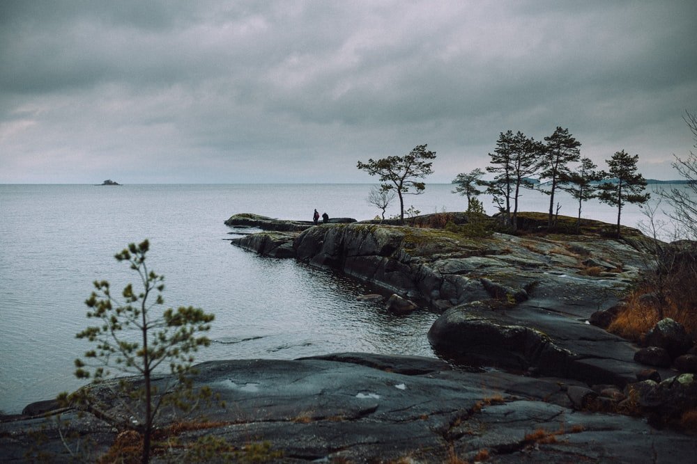 green trees on rocky shore by the sea under white cloudy sky during daytime