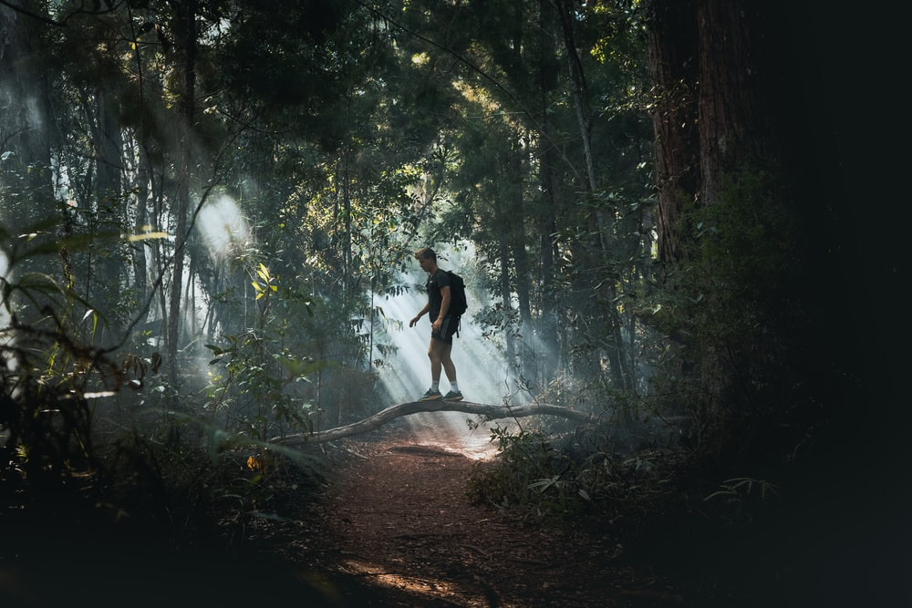 man in black shirt and black shorts walking on forest during daytime