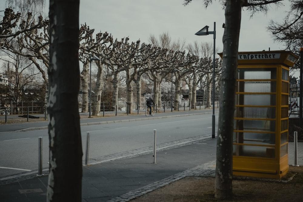 black and white street light near bare trees during daytime