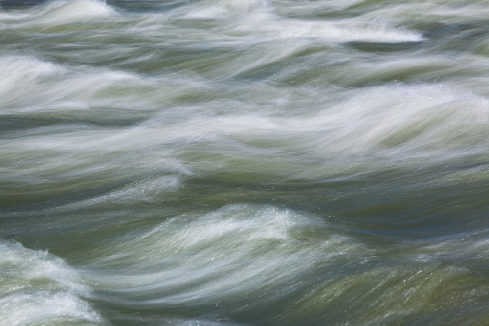 water waves on body of water