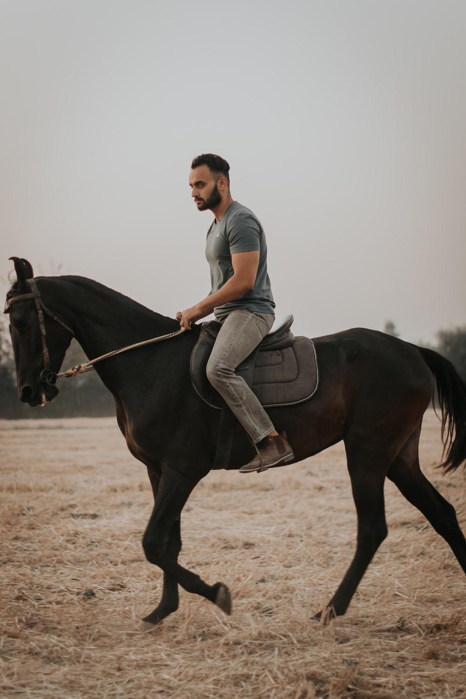 man in white t-shirt riding black horse during daytime