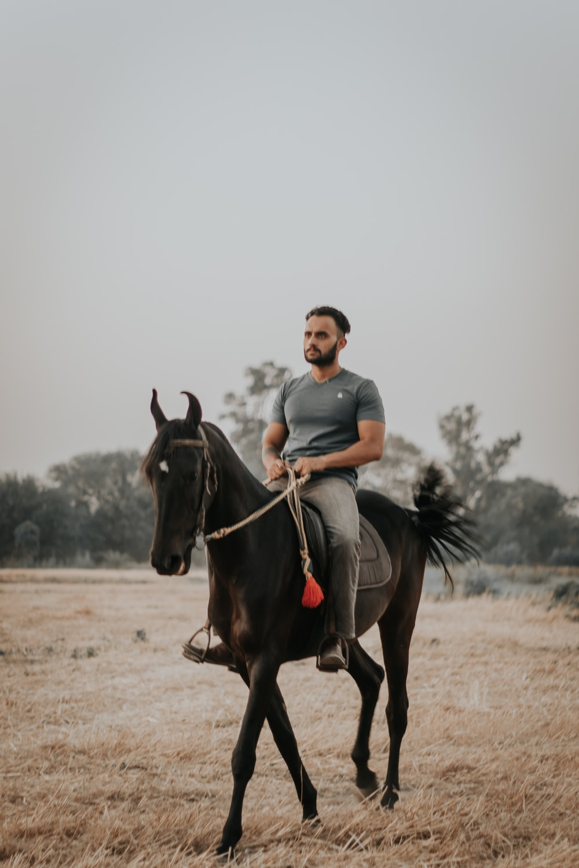 man in blue crew neck t-shirt riding black horse during daytime