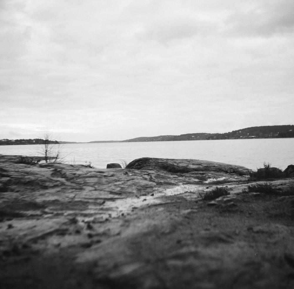 grayscale photo of a lake