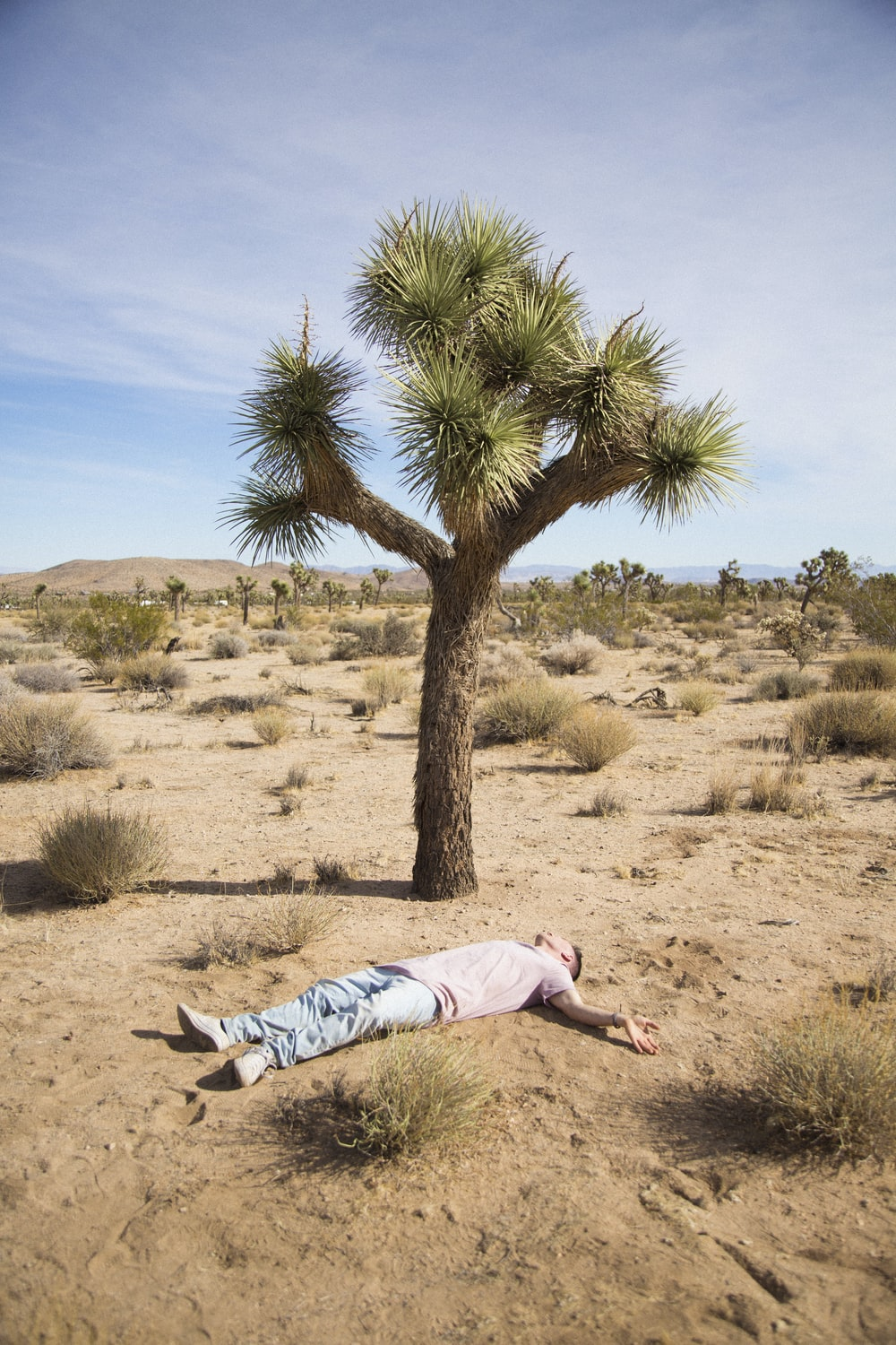 woman in white shirt lying on brown sand during daytime