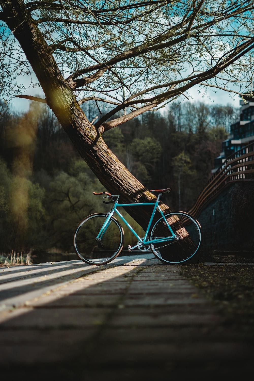 blue city bike on wooden bridge
