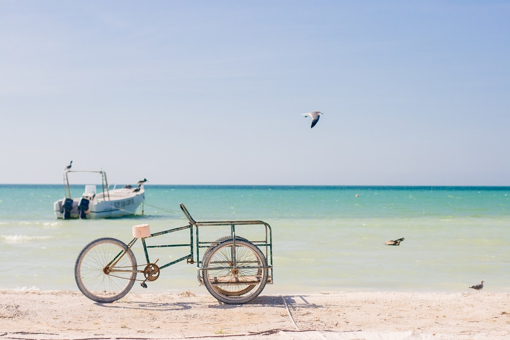 white bicycle on beach during daytime