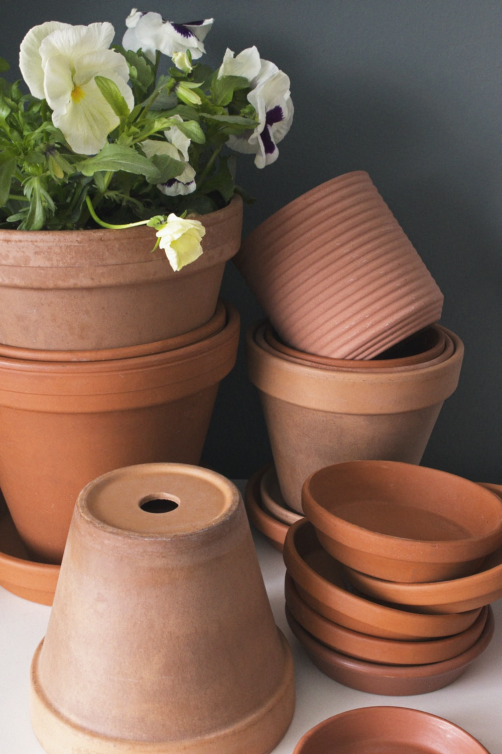brown clay pots with green plants