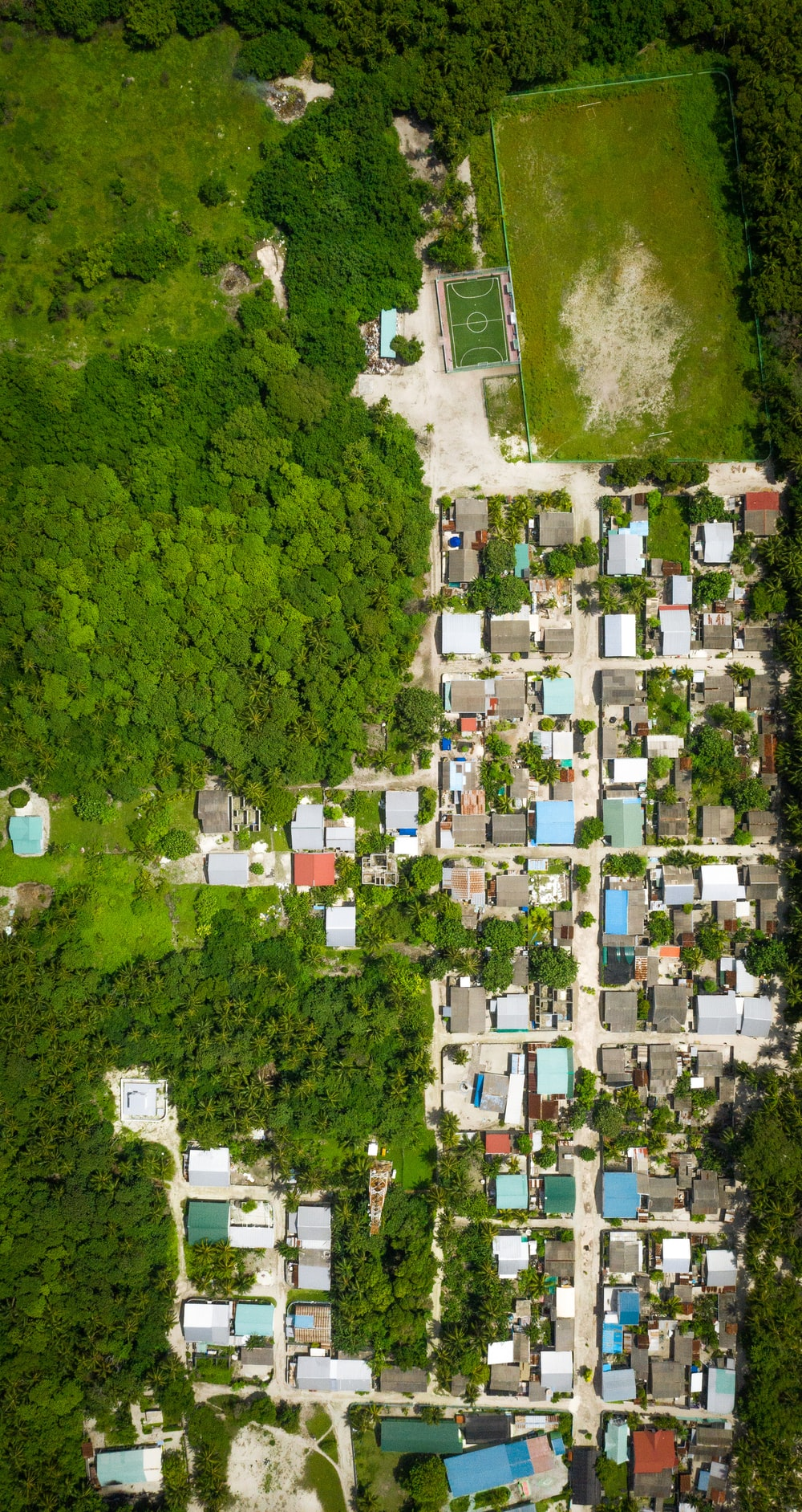 aerial view of houses and trees