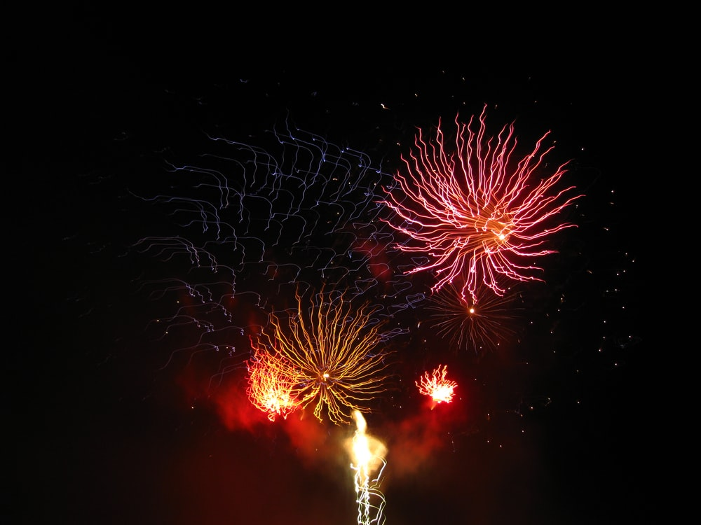 red and white fireworks display during nighttime