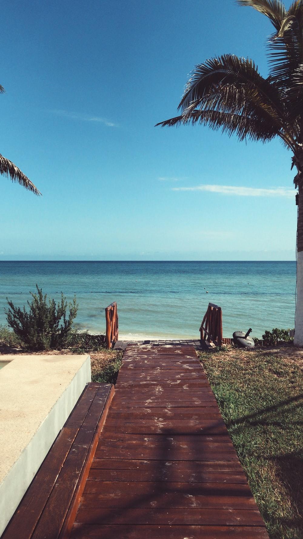 brown wooden pathway on beach during daytime