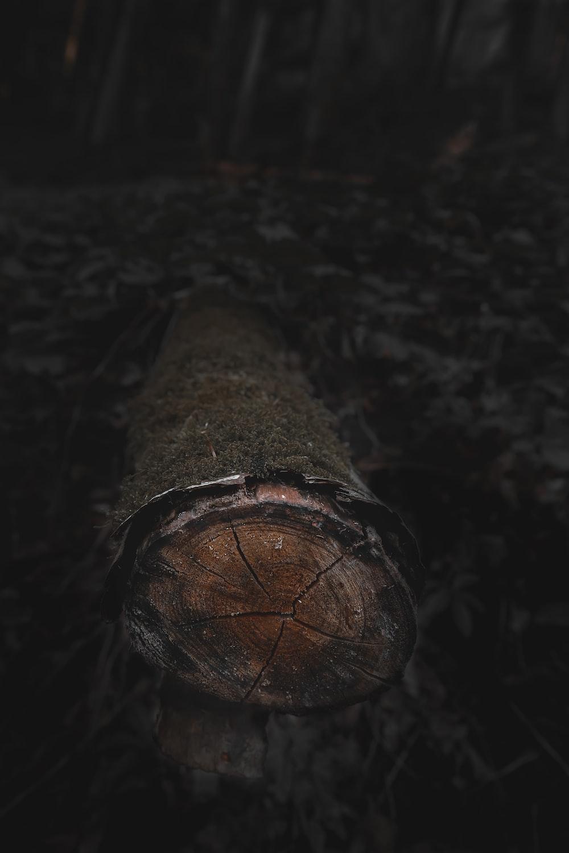 brown wood log on black surface