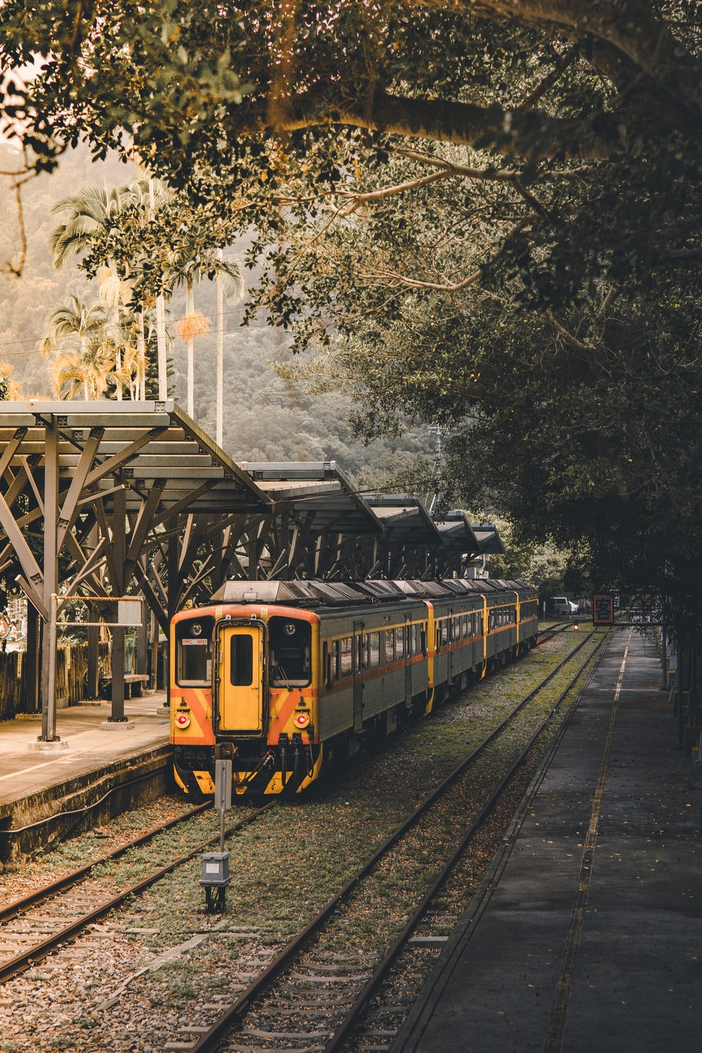 yellow and black train on rail road