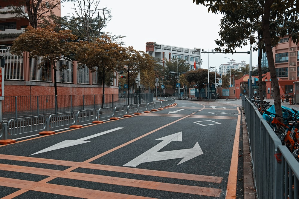 pedestrian lane near trees and buildings during daytime