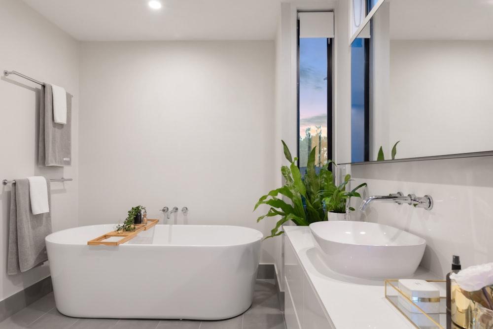 white ceramic bathtub near green potted plant