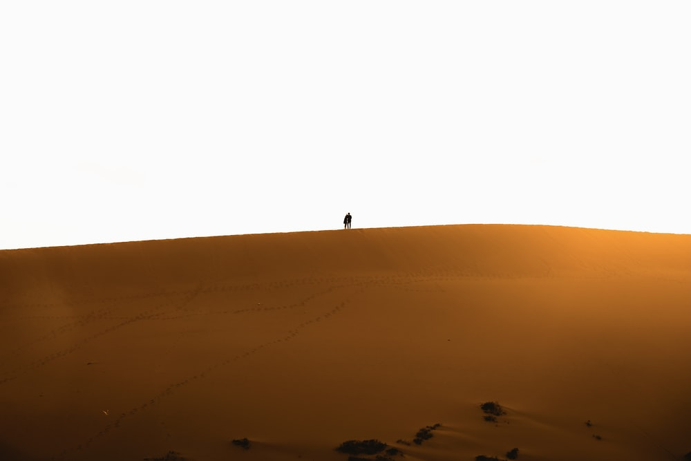 silhouette of person standing on top of hill under blue sky during daytime