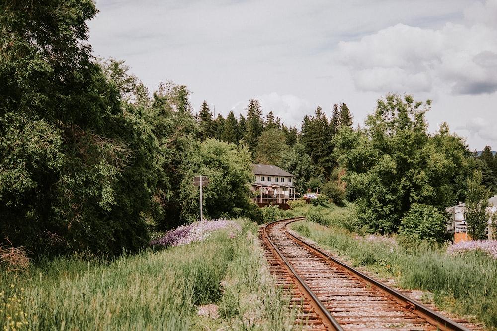 brown train rail near green trees during daytime