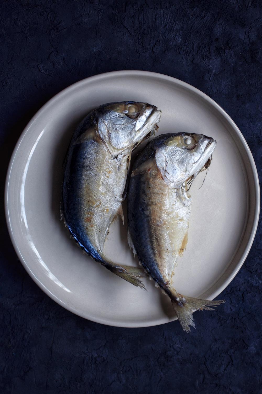 yellow and gray fish on white ceramic bowl