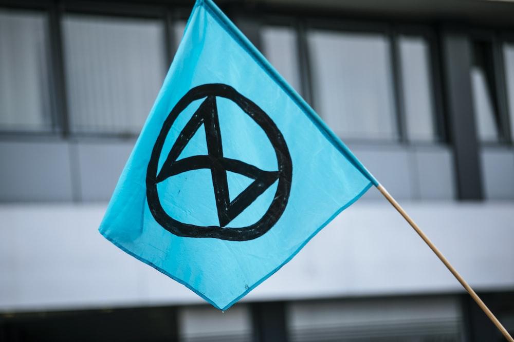 blue and white star flag