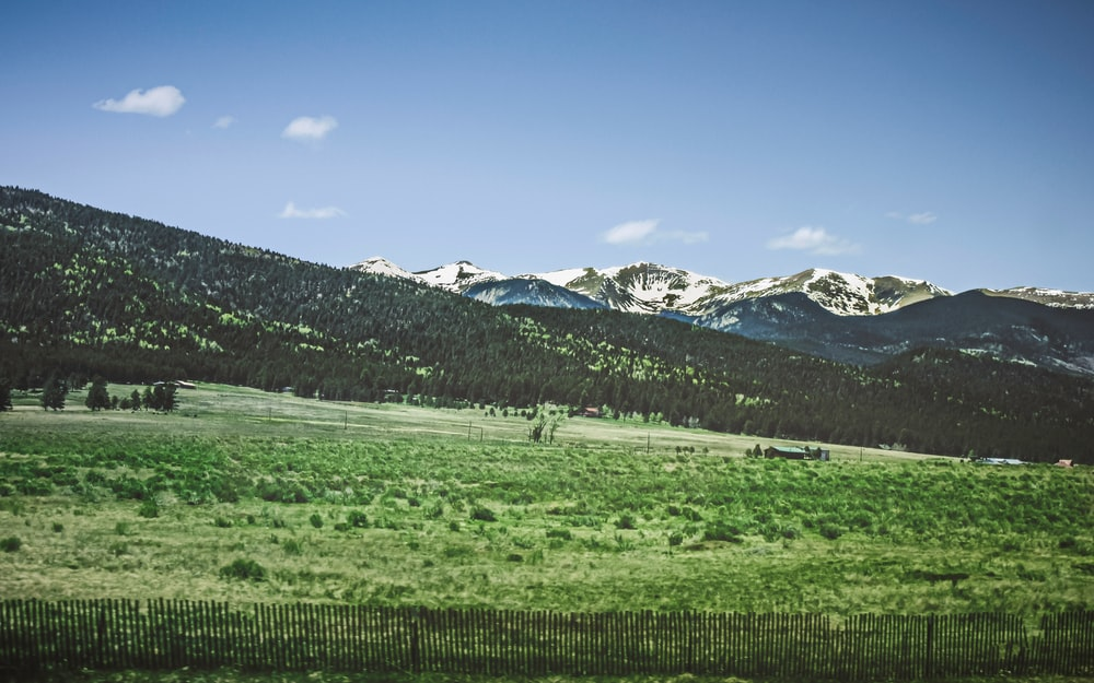 green grass field near snow covered mountains under blue sky during daytime