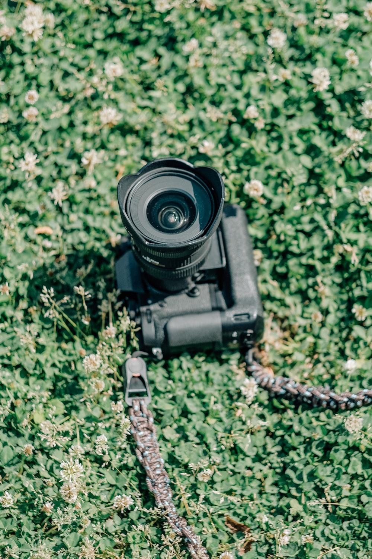 black dslr camera on green grass