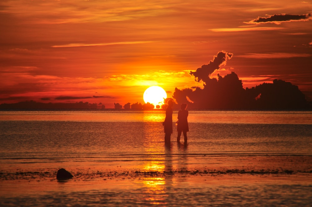 silhouette of 2 people standing on beach during sunset