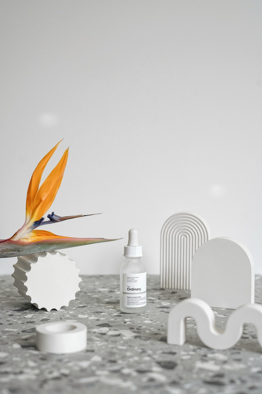 orange and yellow bird on white ceramic bowl