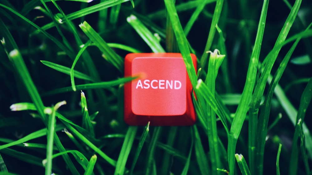 red and white plastic container on green grass