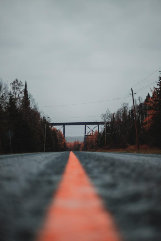 gray concrete road between trees under gray sky