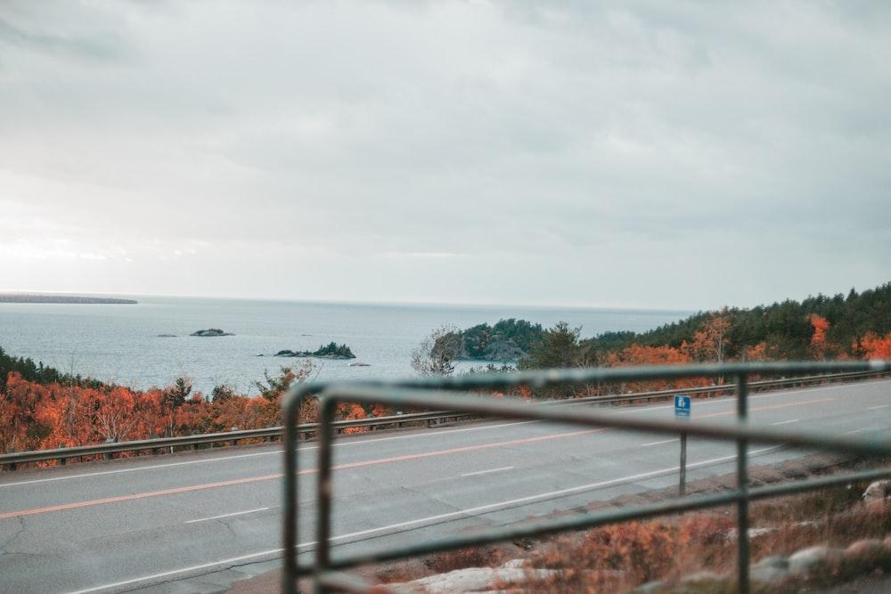 gray asphalt road near body of water during daytime