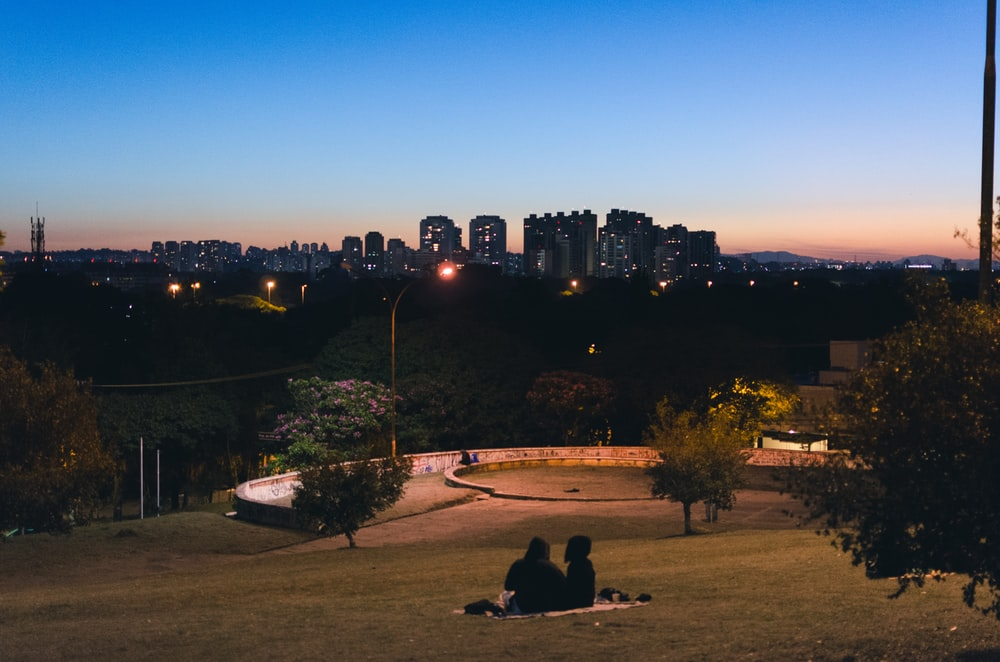 people sitting on brown grass field near city buildings during night time