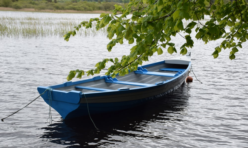 blue and white boat on lake during daytime