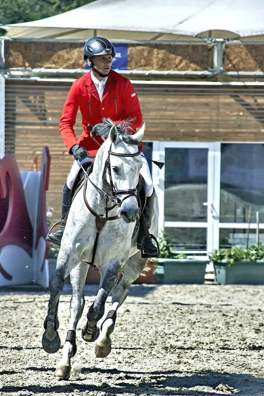 man in red jacket riding white horse during daytime
