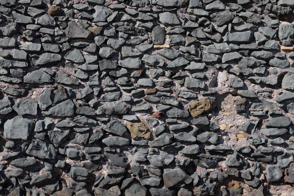 brown dried leaves on gray rocky ground