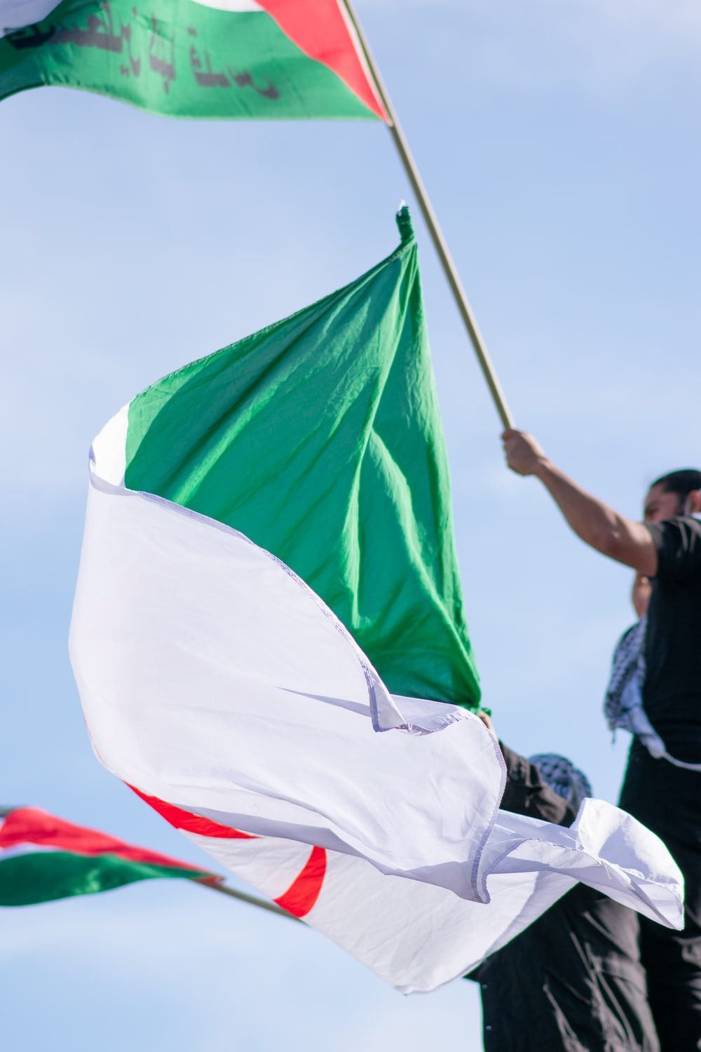 man in black t-shirt holding green and white flag