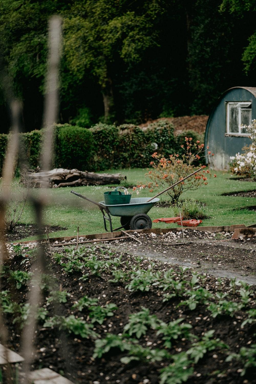 green and brown wheelbarrow on brown soil
