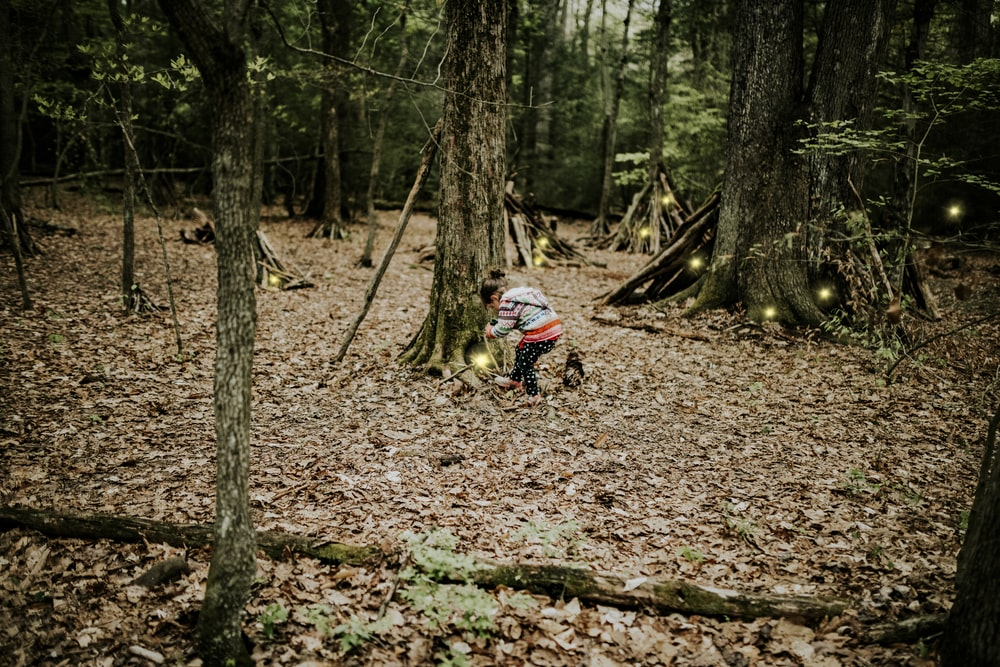man in blue jacket riding motorcycle in forest during daytime