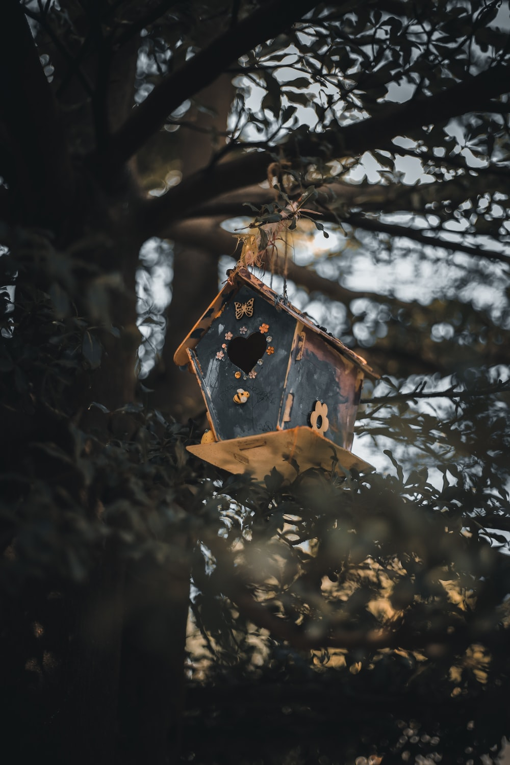brown wooden bird house on tree branch during daytime