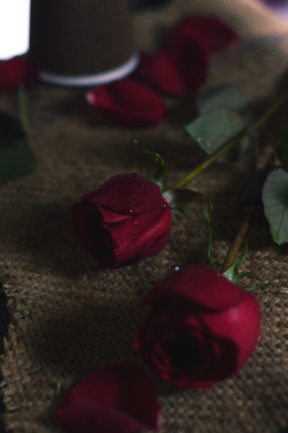 red rose on brown textile