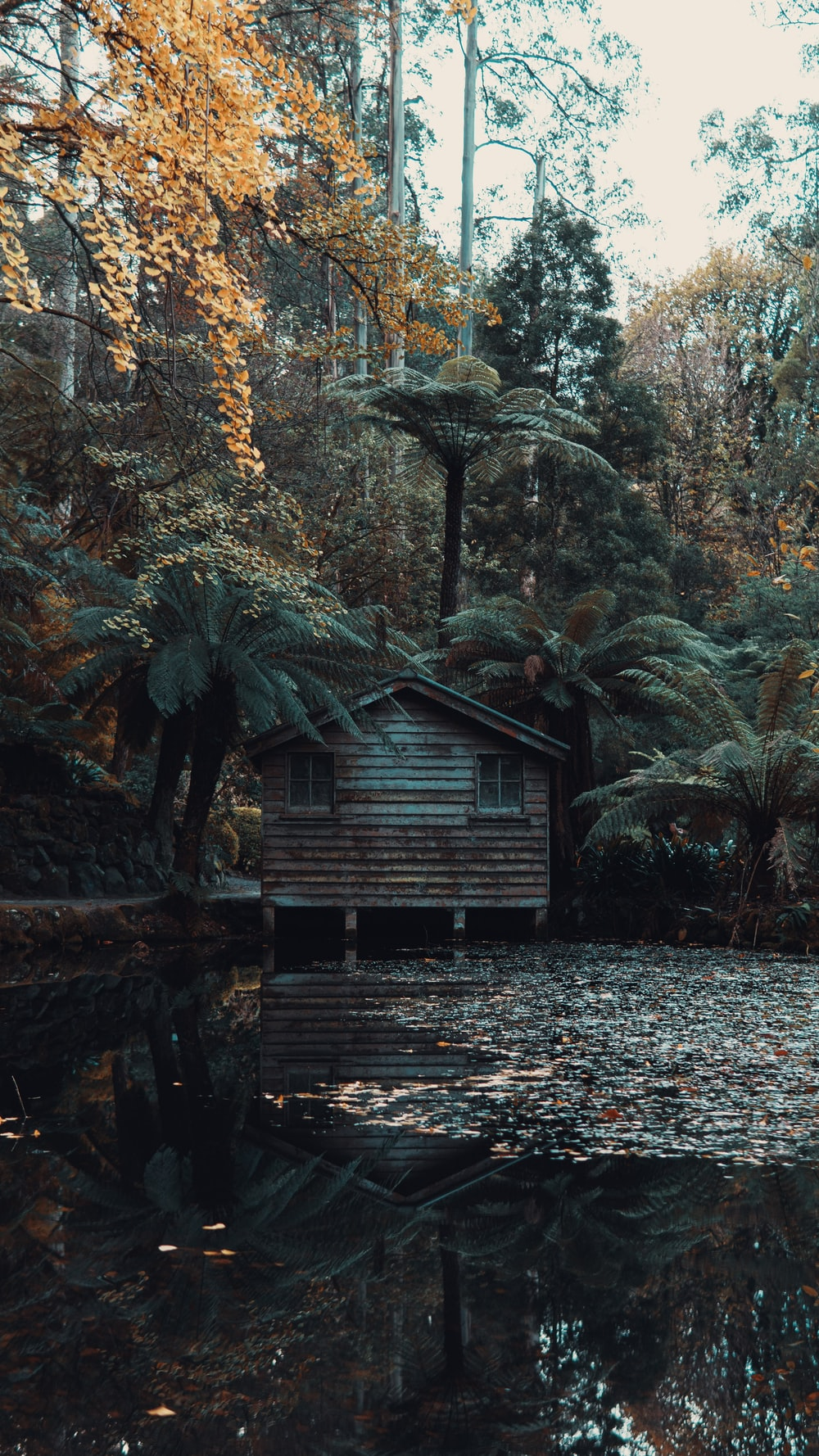 brown wooden house on lake