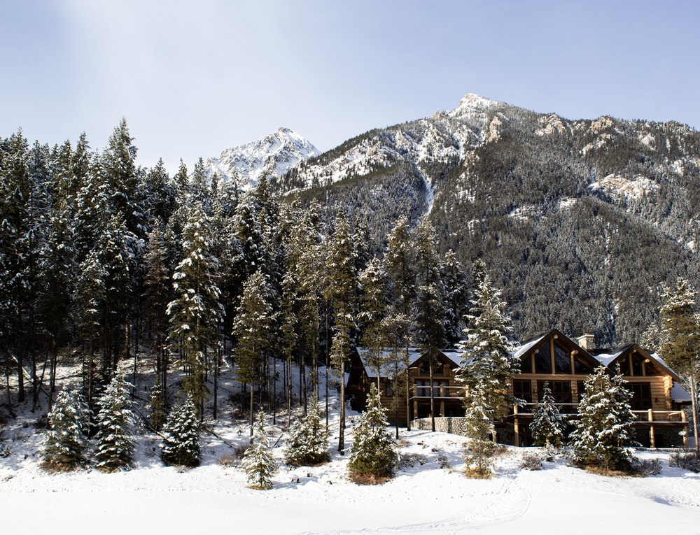 brown wooden house near green trees and snow covered mountain during daytime