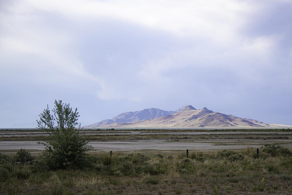 green grass field near brown mountain under white sky during daytime