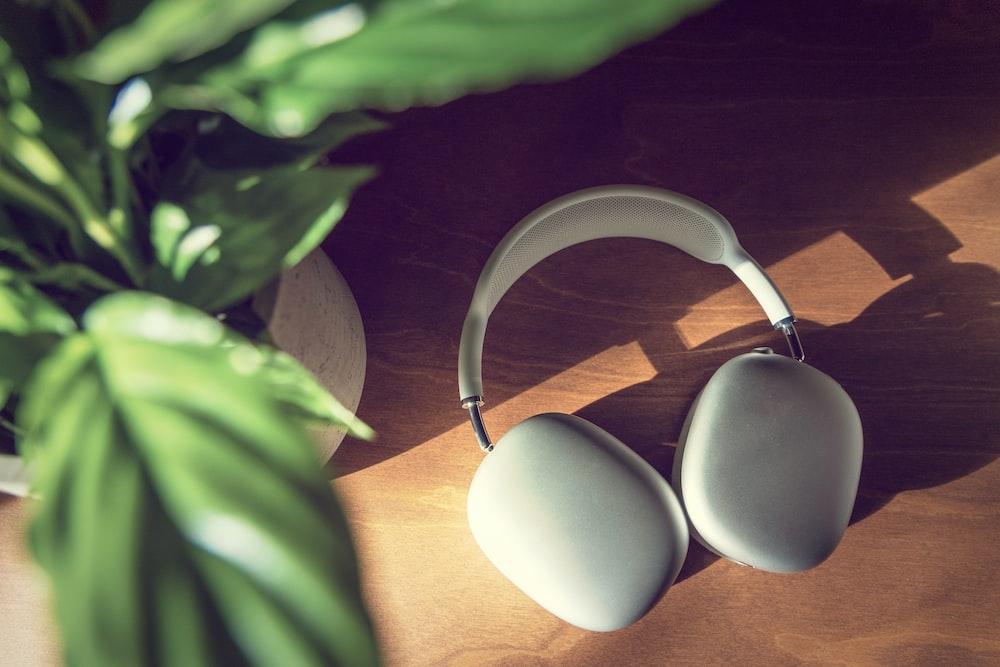 2 white eggs on silver holder