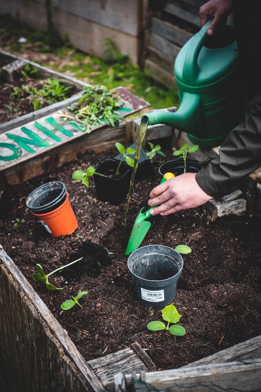 person holding green plastic shovel