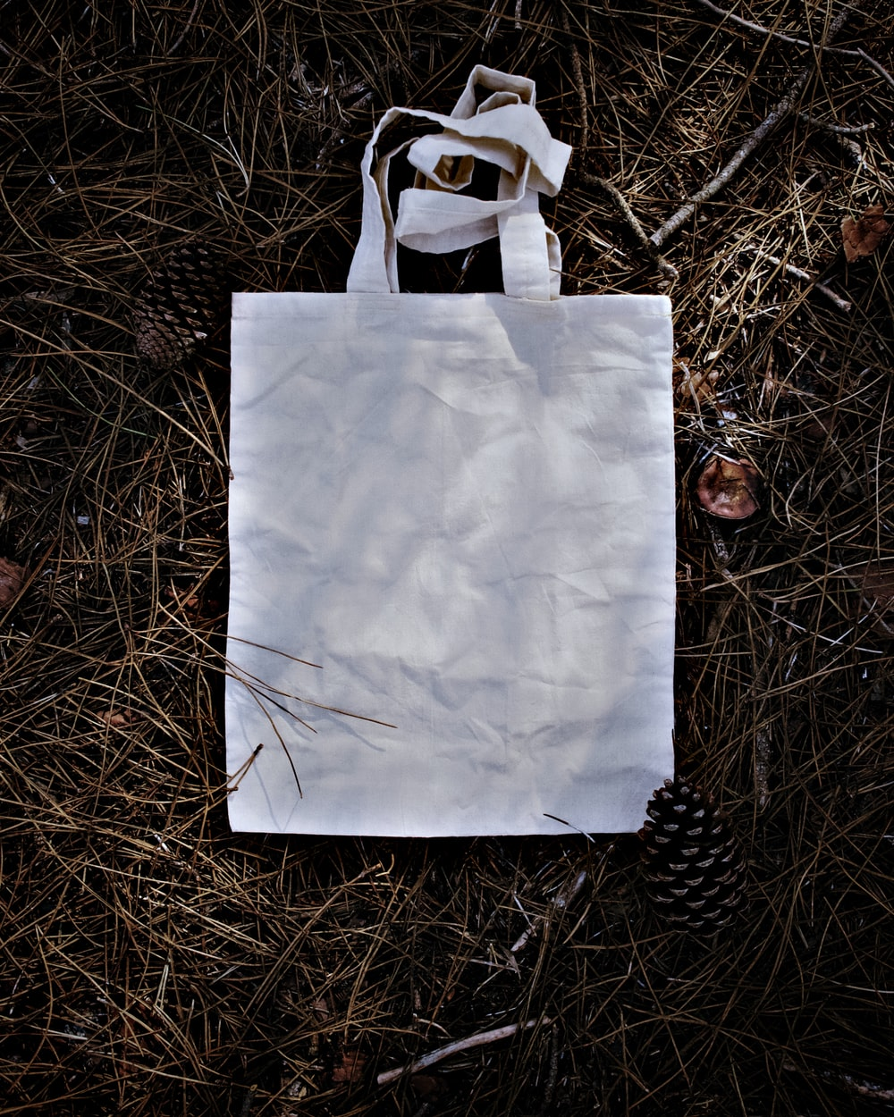 white paper bag on brown grass