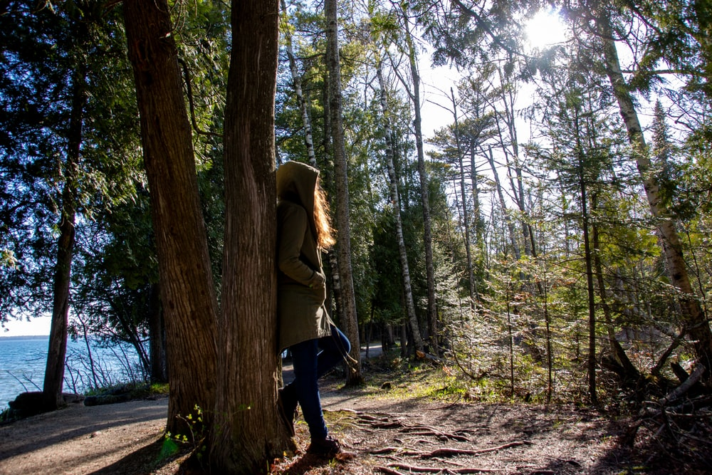 woman in green jacket and black pants walking on forest during daytime