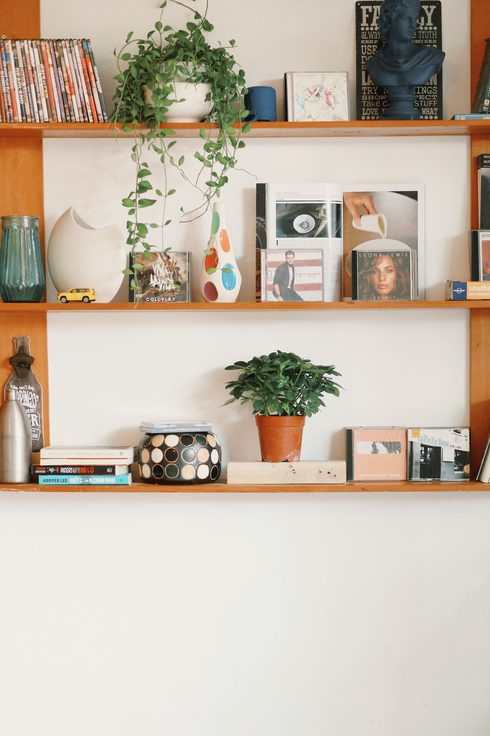 green potted plant on white wooden shelf